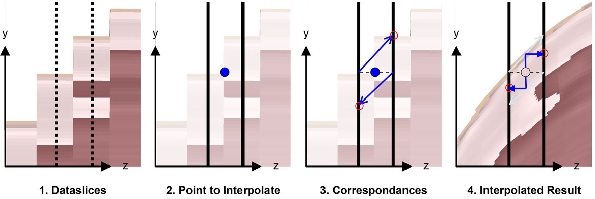 Interpolation Steps